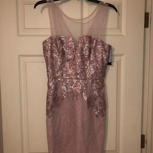 Blush pink BCBG Mazazria dress